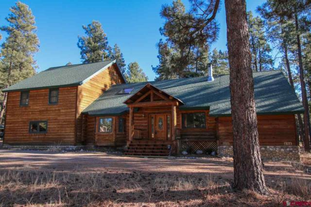 552 Fantango Road, Durango, CO 81301 (MLS #740145) :: Keller Williams CO West / Mountain Coast Group
