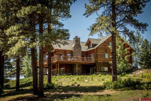 66 Rendezvous, Pagosa Springs, CO 81147 (MLS #740396) :: Durango Home Sales