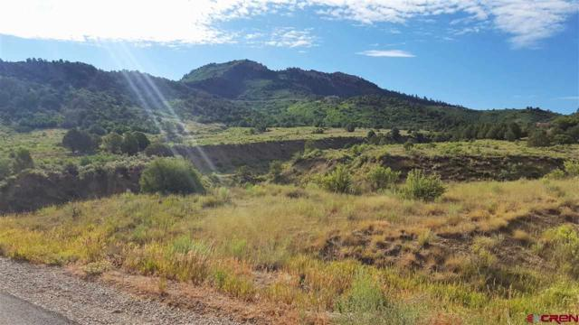 TBD Deer Valley Road, Hesperus, CO 81326 (MLS #740433) :: Durango Home Sales