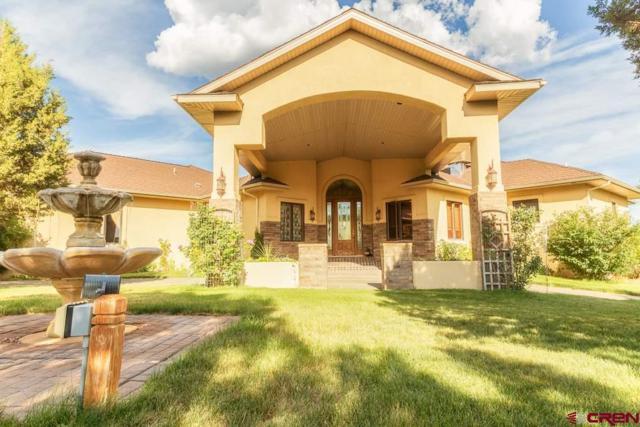 13565 3100 Road, Hotchkiss, CO 81419 (MLS #740504) :: Durango Home Sales
