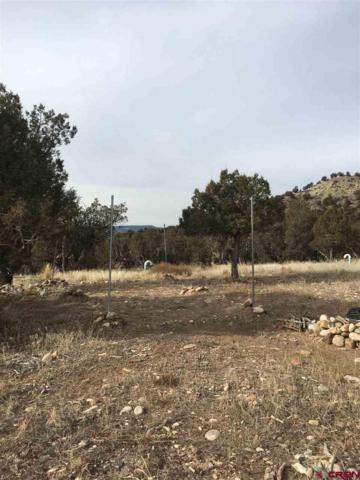 65 Summit Swing, Arboles, CO 81121 (MLS #740507) :: Durango Home Sales