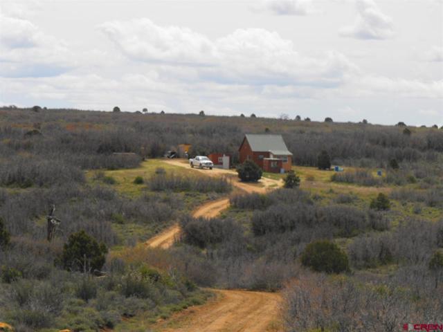 4537 Road 10.9, Dove Creek, CO 81324 (MLS #740519) :: Durango Home Sales
