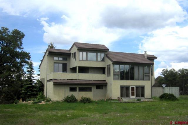 296 Tower Road S, Ridgway, CO 81432 (MLS #740605) :: Durango Home Sales