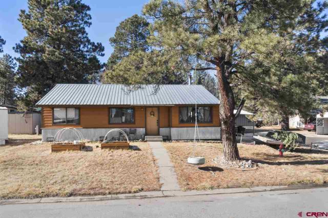 12 Timber Drive, Durango, CO 81303 (MLS #740676) :: Durango Home Sales