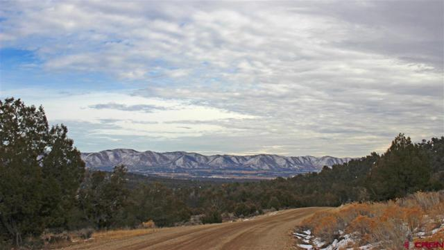 TBD Road 35 Lot 111, Mancos, CO 81328 (MLS #740709) :: Durango Home Sales