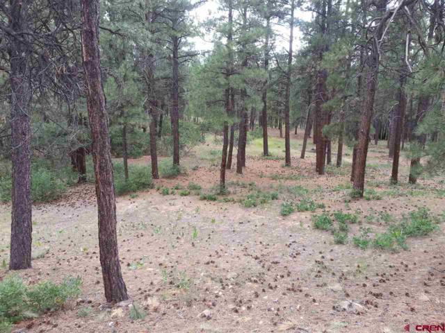 627 Elk Valley Road, Bayfield, CO 81122 (MLS #740712) :: Durango Home Sales
