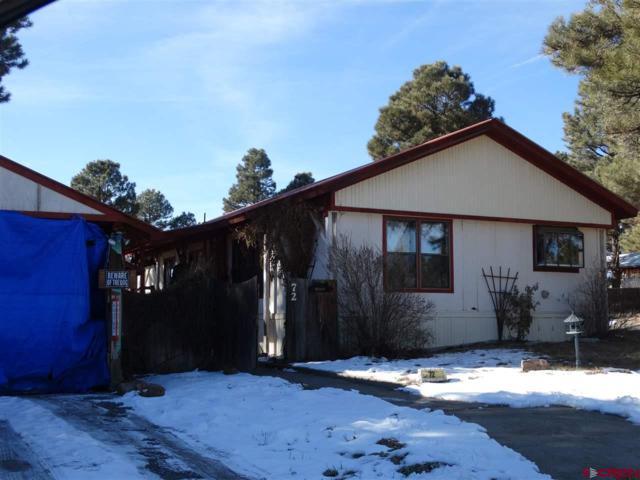 72 Canyon, Pagosa Springs, CO 81147 (MLS #740721) :: Durango Home Sales