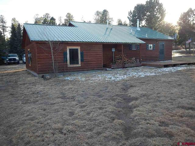 120 Conifer Drive, South Fork, CO 81154 (MLS #740773) :: Durango Home Sales