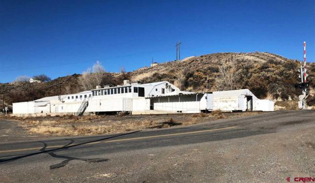 21922 Austin Road, Austin, CO 81410 (MLS #740941) :: CapRock Real Estate, LLC
