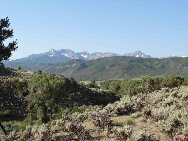 Outlot P2/A River Park, Ridgway, CO 81432 (MLS #740957) :: CapRock Real Estate, LLC