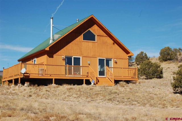15 Elk Mountain Springs, Saguache, CO 81149 (MLS #740971) :: Durango Home Sales