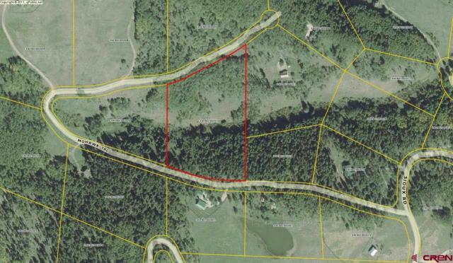 147 Mohawk Trail, Gunnison, CO 81230 (MLS #741033) :: Durango Home Sales