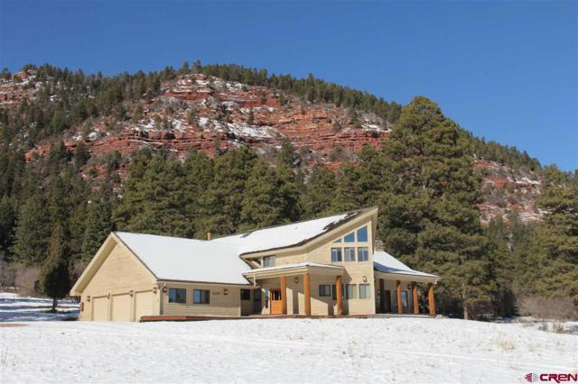 9257 High Meadows Ranch, Durango, CO 81301 (MLS #741037) :: Durango Mountain Realty