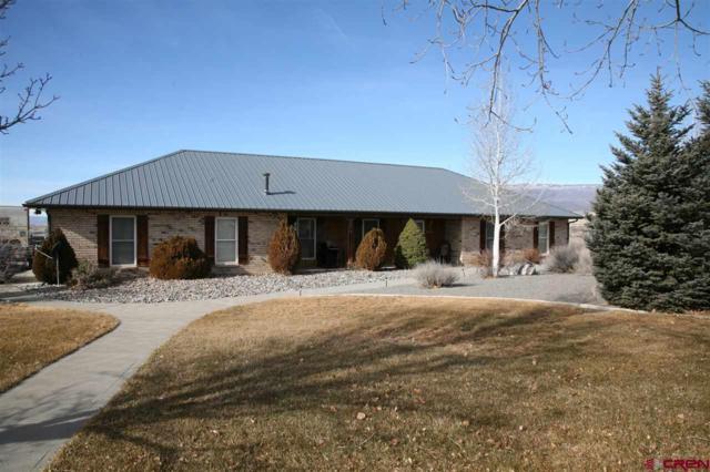 20088 & 20076 Deer Creek Road, Cory, CO 81414 (MLS #741112) :: Durango Home Sales