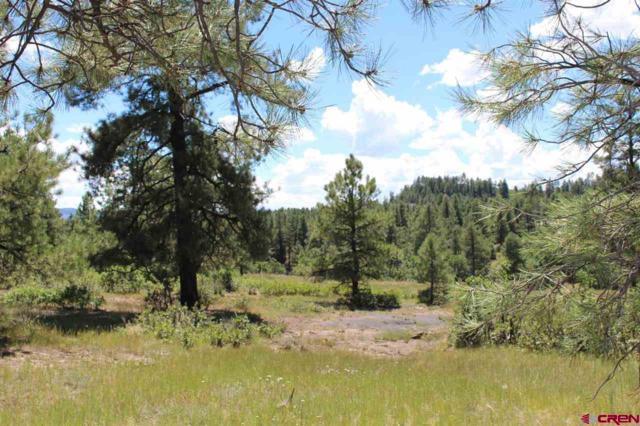 x Cool Pines Drive, Pagosa Springs, CO 81147 (MLS #741117) :: CapRock Real Estate, LLC