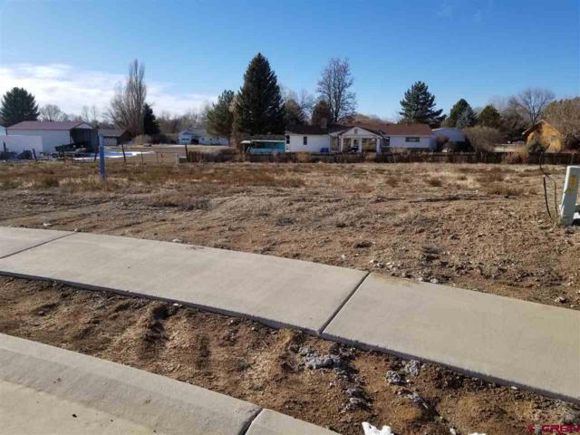 448 (LOT 25) Hawthorn Drive, Hotchkiss, CO 81419 (MLS #741156) :: Durango Home Sales