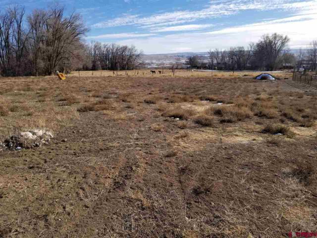 463 (LOT 3A) Hawthorn Drive, Hotchkiss, CO 81419 (MLS #741165) :: Durango Home Sales