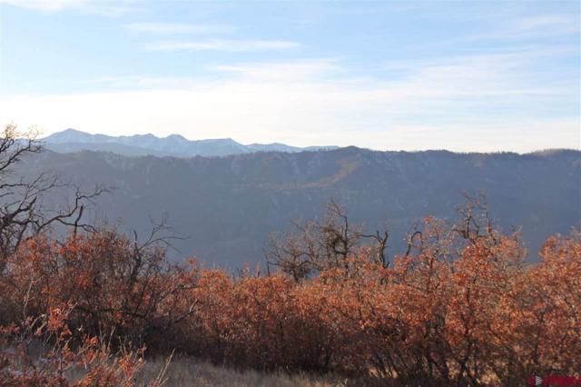 189 Thunder Mountain, Durango, CO 81301 (MLS #741187) :: Durango Mountain Realty
