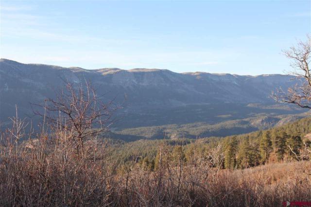 57 Kestral, Durango, CO 81301 (MLS #741188) :: Durango Mountain Realty