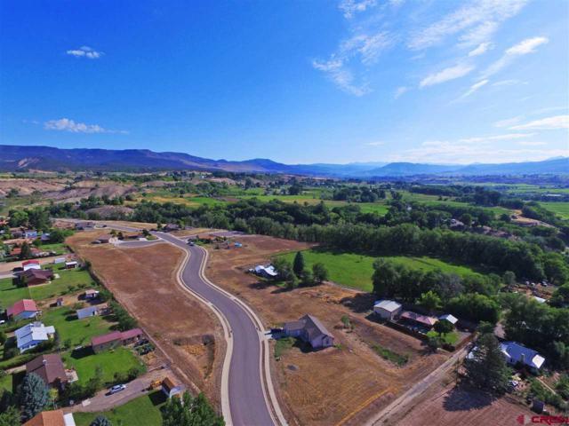 519 Juniper, Hotchkiss, CO 81419 (MLS #741199) :: Durango Home Sales
