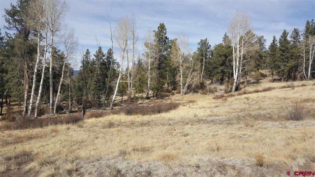 203 S Skyline Drive, South Fork, CO 81154 (MLS #741242) :: Durango Home Sales