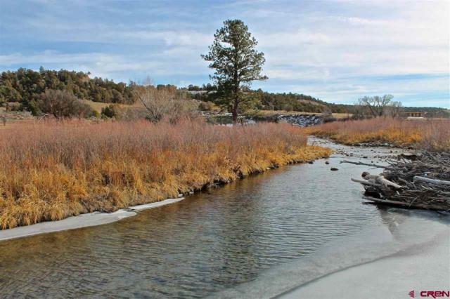231 Cowboy Trail, Durango, CO 81303 (MLS #741269) :: Durango Mountain Realty