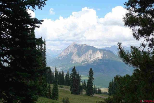 665 Red Mountain Ranch Road, Crested Butte, CO 81224 (MLS #741365) :: Durango Home Sales