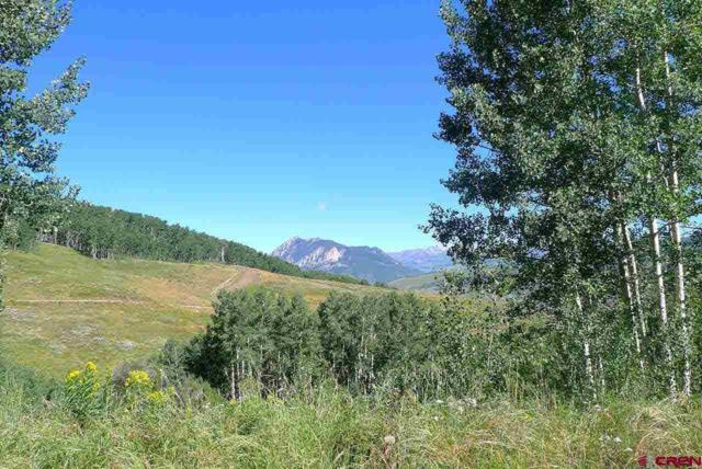 1363 Red Mountain Ranch Road, Crested Butte, CO 81224 (MLS #741371) :: Durango Home Sales