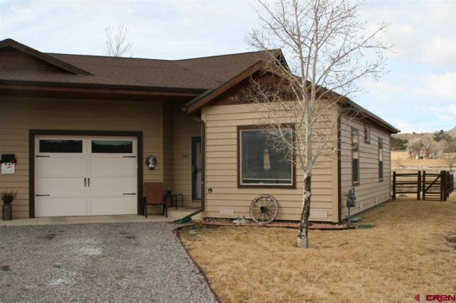 407 Kismet Street, Ridgway, CO 81432 (MLS #741408) :: CapRock Real Estate, LLC