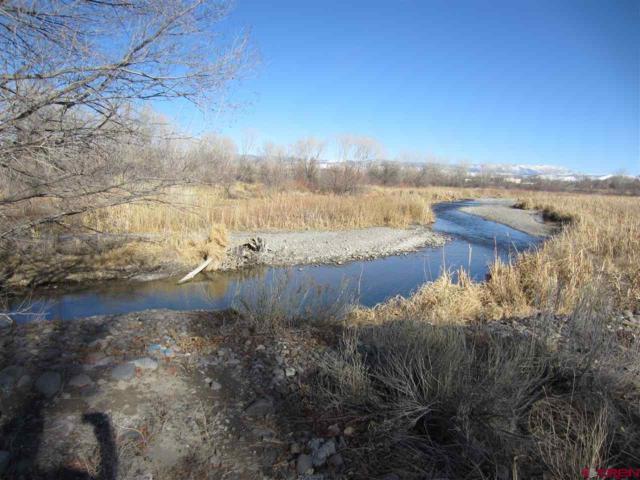 14424 Marine Road, Montrose, CO 81403 (MLS #741467) :: Durango Home Sales