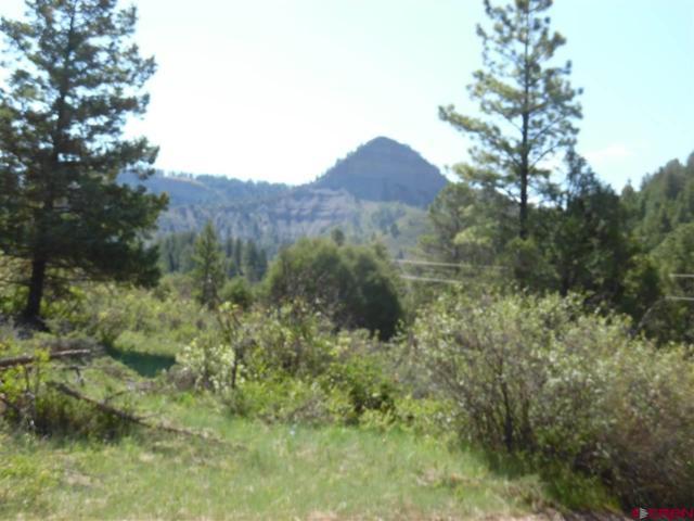 53 Haystack Circle, Pagosa Springs, CO 81147 (MLS #741471) :: CapRock Real Estate, LLC