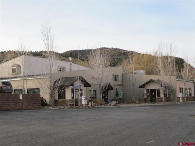 98 Everett Street, Durango, CO 81303 (MLS #741532) :: Durango Mountain Realty