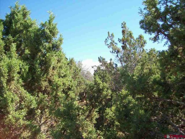 TBD Pinon Drive, Cedaredge, CO 81413 (MLS #741582) :: The Dawn Howe Group | Keller Williams Colorado West Realty