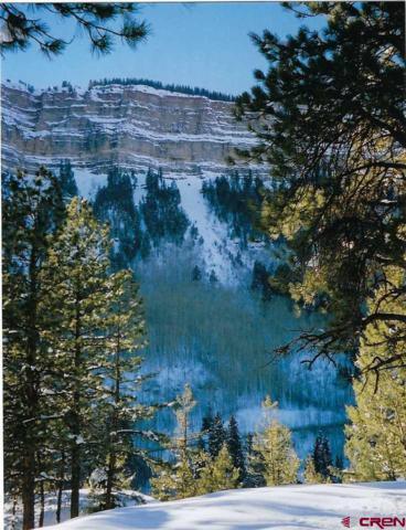 675 Spruce Mesa Drive, Durango, CO 81301 (MLS #741615) :: Durango Mountain Realty