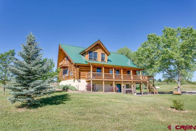 355 Clover Pl, Durango, CO 81303 (MLS #741710) :: Durango Home Sales