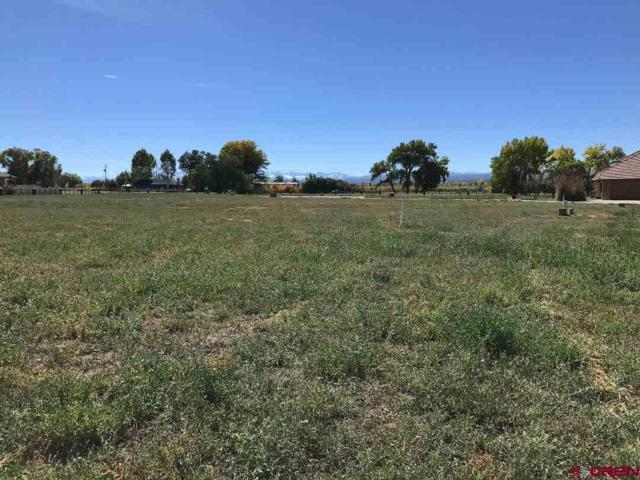 TBD Redcliff Circle, Montrose, CO 81401 (MLS #741747) :: Durango Home Sales