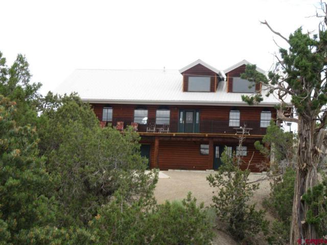 27431 Road P.2, Dolores, CO 81323 (MLS #741798) :: Durango Home Sales