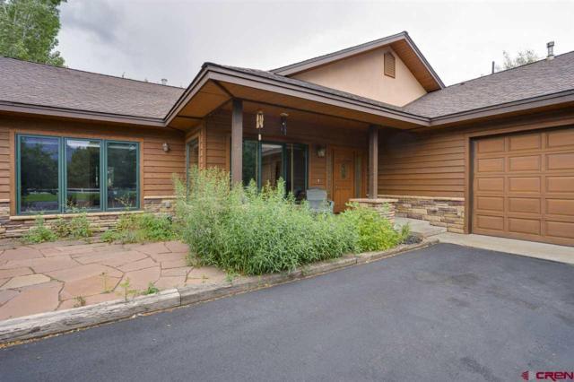 746 N Dalton Ranch Road, Durango, CO 81301 (MLS #741990) :: Durango Mountain Realty