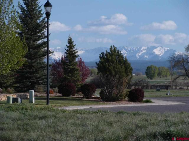 TBD Red Cliff Circle, Montrose, CO 81401 (MLS #742069) :: Durango Home Sales