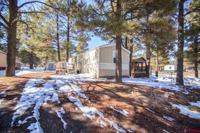 256 Fireside Street, Pagosa Springs, CO 81147 (MLS #742090) :: Durango Home Sales