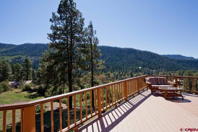 130 Puma Place, Durango, CO 81301 (MLS #742141) :: Durango Mountain Realty