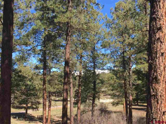 TBD Shiloh Circle, Durango, CO 81303 (MLS #742199) :: Durango Mountain Realty