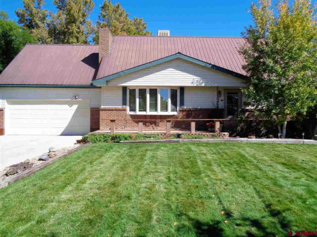 1013 Scenic Circle, Montrose, CO 81401 (MLS #742221) :: Durango Home Sales