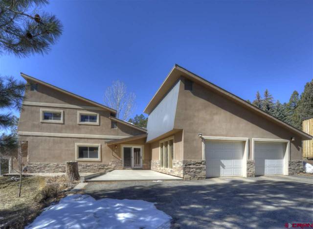 768 Sortais Road, Durango, CO 81301 (MLS #742241) :: Durango Mountain Realty