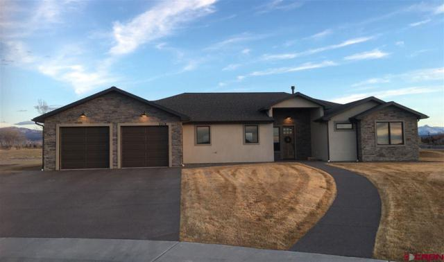 2316 Signature Ridge Court, Montrose, CO 81401 (MLS #742312) :: Durango Home Sales