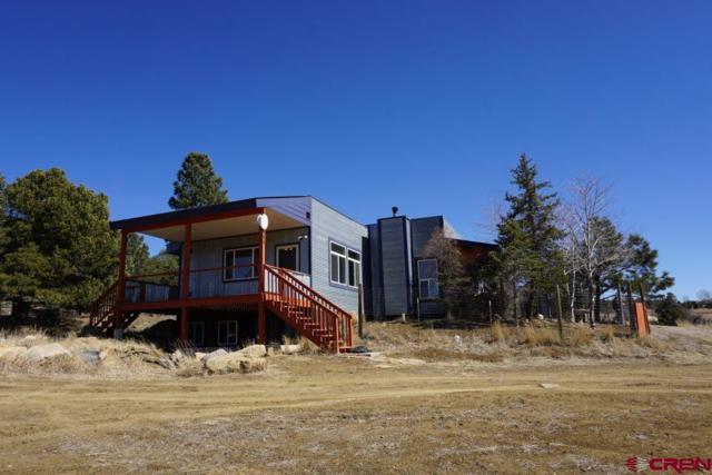 665 Cr 226, Durango, CO 81301 (MLS #742322) :: Durango Mountain Realty