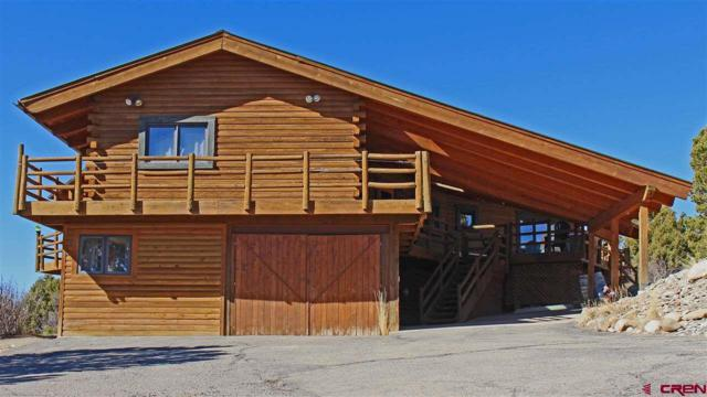 15947 Rd 28.3, Dolores, CO 81323 (MLS #742323) :: CapRock Real Estate, LLC