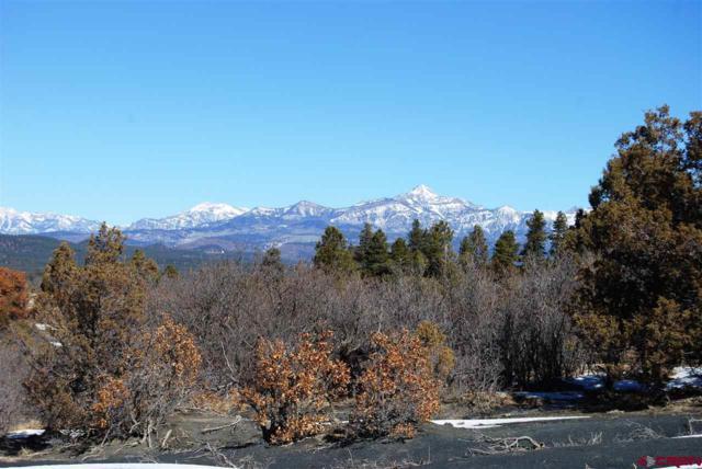 224 Rifle Pl., Pagosa Springs, CO 81147 (MLS #742374) :: CapRock Real Estate, LLC