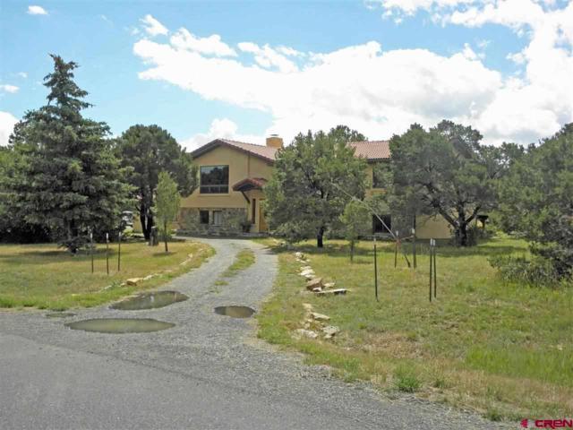 1138 Ponderosa Drive, Ridgway, CO 81432 (MLS #742414) :: Durango Home Sales