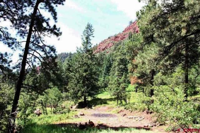 7531 Falls Creek Main, Durango, CO 81301 (MLS #742420) :: Durango Mountain Realty